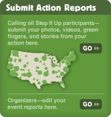Submit Action Report Preview